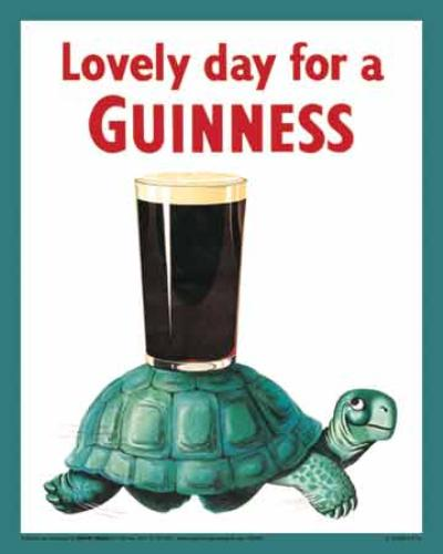 Guinness_Turtle